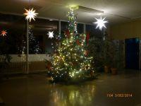 Der KKG Weihnachtsbaum