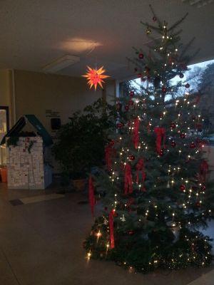 Weihnachtsbaum und Guatemala-Haus 2012