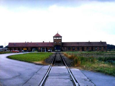2008 auschwitz